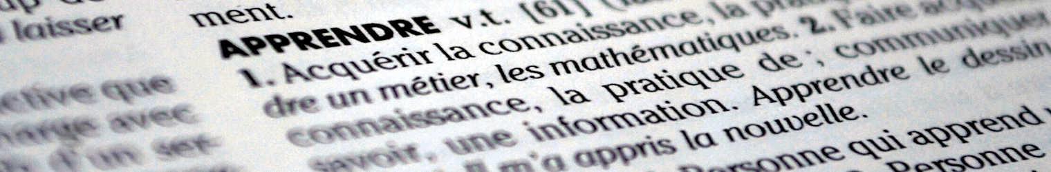 Ecole Pigeon Vole – Remise des dictionnaires aux élèves de CM2